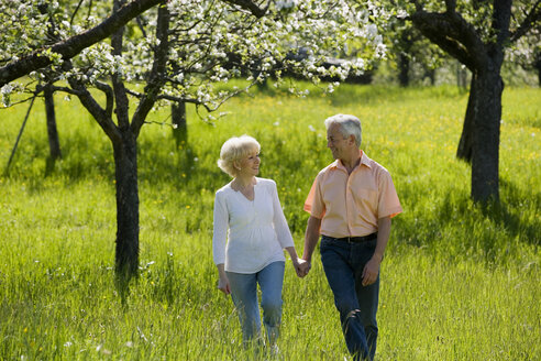 Germany, Baden Württemberg, Tübingen, Senior couple walking through field - WESTF08859