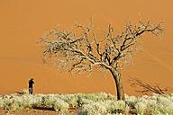 Africa, Namibia, Photographer in Namib Desert - FOF00992