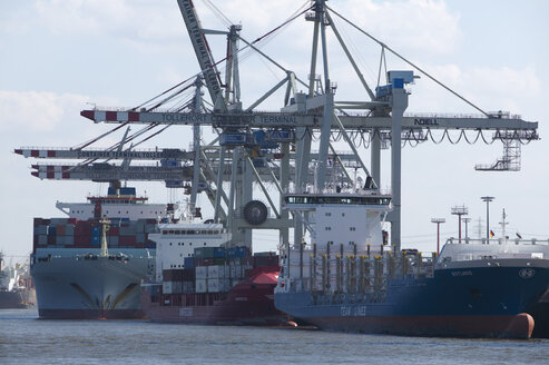 Germany, Hamburg, Container terminal - TH00787