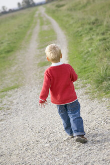 Little boy (3-4) walking across field path, rear view - SMOF00162