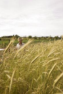 Farmer in field - BMF00496