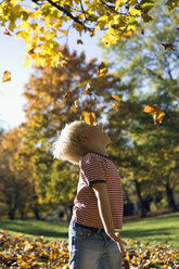 Little boy (4-5) playing with falling leaves - SMO00244