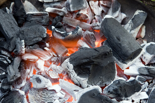 Burning Barbecue Charcoal - AWDF00158