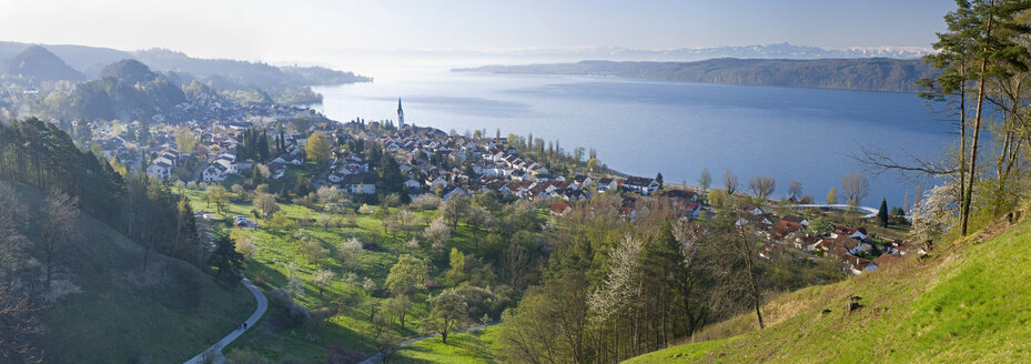 Germany, Lake Constance, Sipplingen, Panoramic view - SHF00264