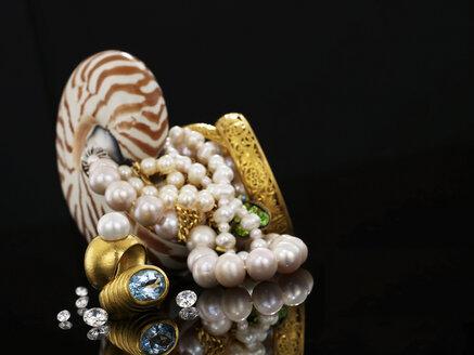Nautilus and jewellery - AKF00030