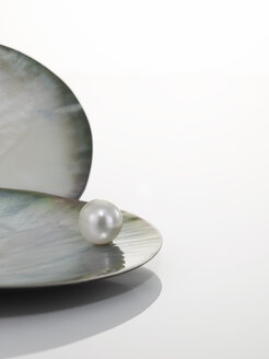 Pearl in shell - AKF00009