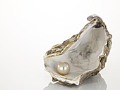 Pearl on oyster shell, close-up - AKF00006
