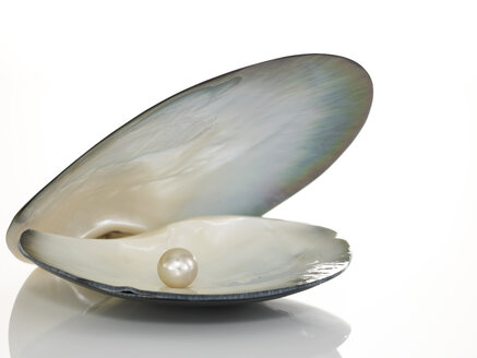 Shell with pearl inside - AKF00003