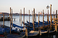 Italy, Venice, Gondolas at anchor - GW00661