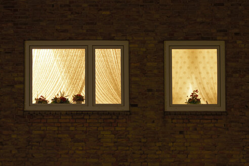 Germany, Window with flowerpots at night - TL00303