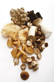 Assorted mushrooms, elevated view - 10768CS-U