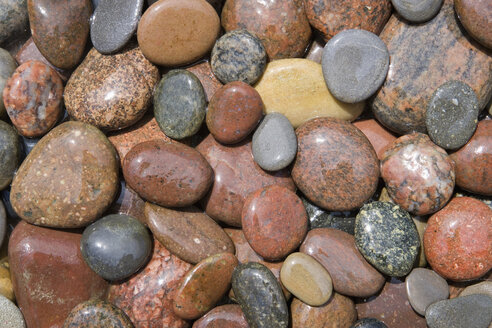 Variety of pebbles, elevated view, close up - WWF00766