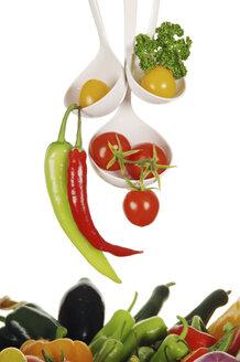 Variety of vegetables in ladles - 00486LR-U