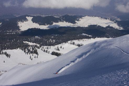 India, Kashmir, Gulmarg, Person skiing downhill - FFF01055
