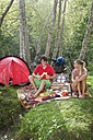 Austria, Salzburger Land, Couple having a picnic - HHF02900