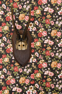 Deer antler on floral wallpaper - AWDF00355