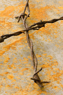 Rusty barbed wire on rusty sheet, close-up - AWDF00352