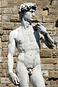 Italy, Tuscany, Florence, Statue of David, close up - PSF00283