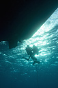 Egypt, Red Sea, Scuba divers by boat under water - GNF01148