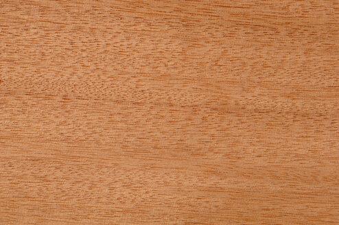 Wood surface, Guarea wood (Guarea cedrata) full frame - CRF01711