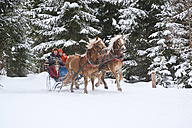 Austria, Salzburger Land, Couple riding in sleigh - HHF03025