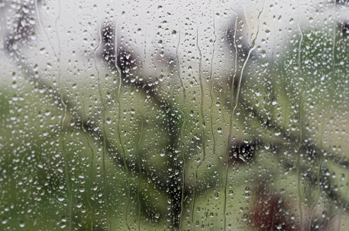 Germany, Schleswig Holstein, Amrum, Raindrops on window, close-up - AWDF00422