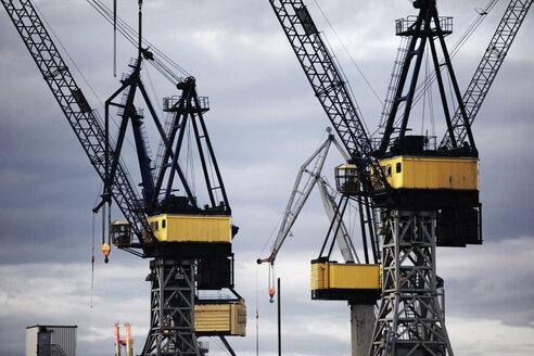 Germany, Hamburg, Cranes in Harbor - TLF00375