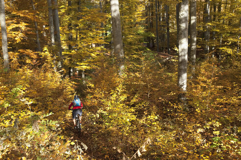 Germany, Bavaria, Woman mountain biking - FFF01093