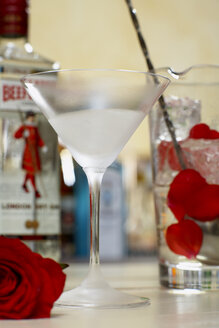 Martini glass with martini and glass with ice cubes and rose petal, close up. - CHKF00967