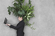 Businesswoman using laptop, foliage plants on head, smiling, portrait, elevated view - BAEF00069