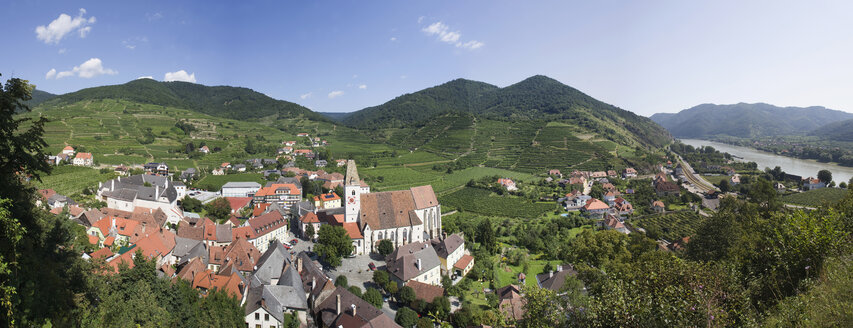 Wachau, Spitz, View of village and vineyard by Danube river - WWF01199