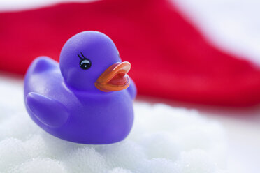 Rubber duck floating on soapsud - SMOF00391