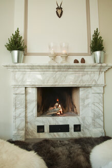 Fireplace in living room - NHF01212