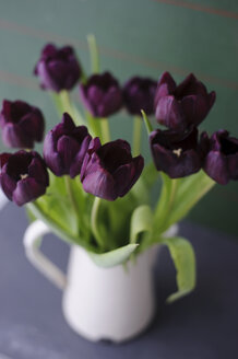 Tulips in vase, close up - COF00125