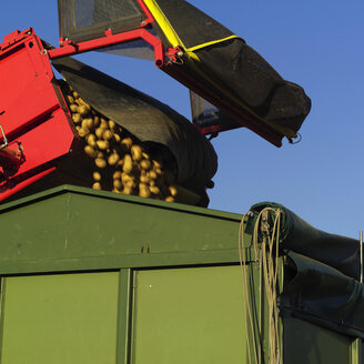 Germany, Hessen, Combine harvester loading potatoes into truck - AKF00160