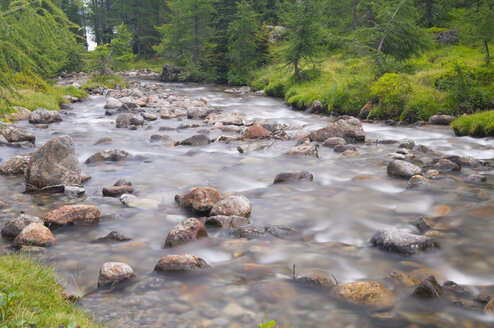 Italy, South Tyrol, Ultental, Creek flowing through trees - SMF00606