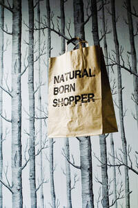 Brown paper bag hanging in studio - HOEF00263