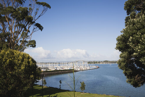 New Zealand, Auckland, North Island, View of baywaters boat harbour with harbour bridge in background - GWF001181