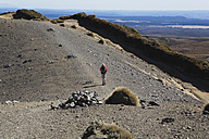 New Zealand, North Island, Woman hiking Woman hiking on upper tama lake trail - GWF001233