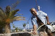 Greece, Crete, Paleochora, Senior man washing car - MSF002399