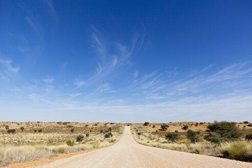 Africa, Namibia, Kalahari, View of empty gravelroad - FOF002315