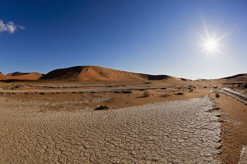 Africa, Namibia, Namib Naukluft National Park, View of dead vlei in namib desert - FOF002364