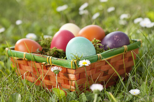 Germany, Lower Bavaria, Easter eggs in basket on grass - MAEF002492