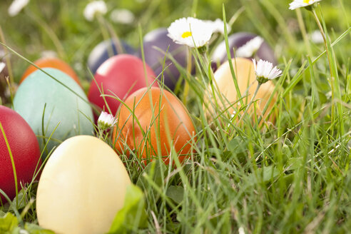 Germany, Lower Bavaria, Variety of easter eggs on grass - MAEF002493