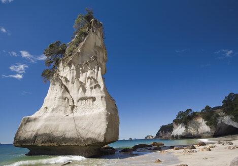 New Zealand, North Island, View of cathedral cove on coromandel peninsula - WBF000378