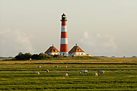 Germany, Schleswig Holstein, Westerhever, View of lighthouse and herd of sheep grazing - RNF000569