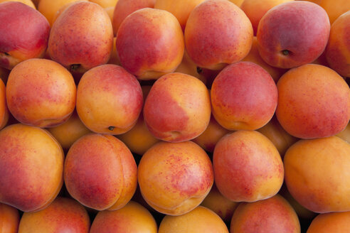 Germany, Munich, Apricots sold at market, close up - SKF000406
