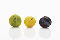Various plums on white background, close up - CSF014119