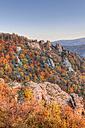 Austria, Lower Austria, Waldviertel, Wachau, View of forest and rock formations in autumn near Duernstein - SIEF000086