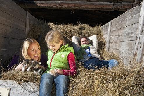 Austria, Salzburg, Flachau, Family lying in hay trailer - HHF003491